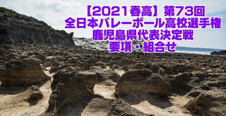 高 バレー 予選 春 2021