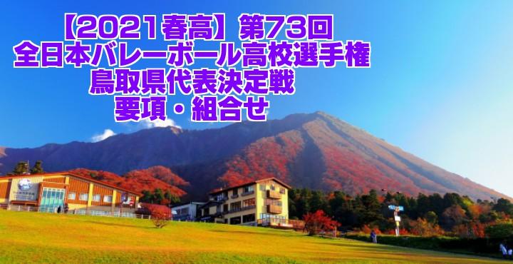 鳥取 2021春高バレー県予選 第73回全日本バレーボール高校選手権大会 要項・組合せ