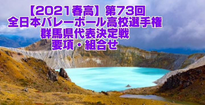 群馬 2021春高バレー県予選|第73回全日本バレーボール高校選手権大会 要項・組合せ