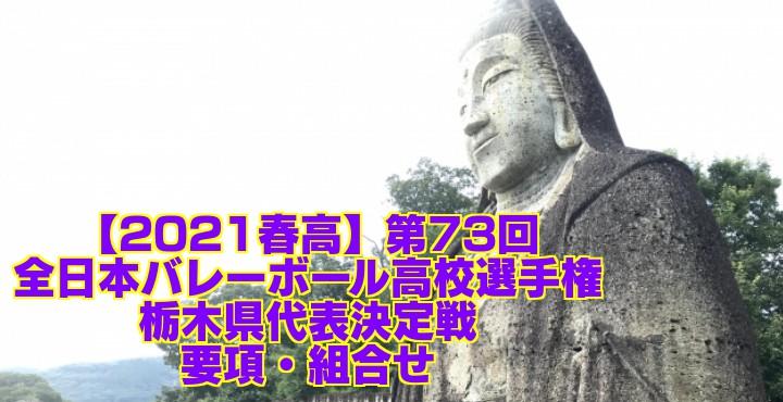 栃木 2021春高バレー県予選|第73回全日本バレーボール高校選手権大会 要項・組合せ