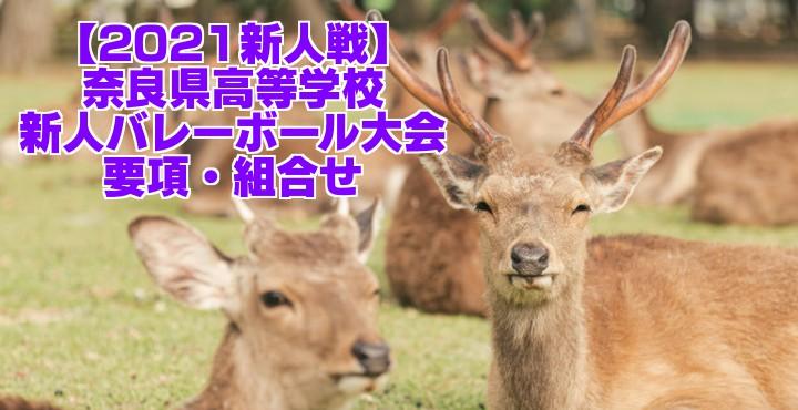 奈良 2021新人戦|令和2年度高校新人バレーボール大会 要項・組合せ