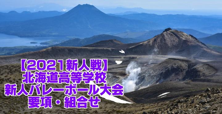 北海道 2021新人戦|令和2年度高校新人バレーボール大会 要項・組合せ
