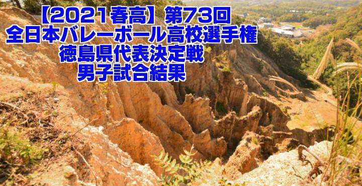 徳島 2021春高バレー県予選|第73回全日本バレーボール高校選手権大会 男子試合結果
