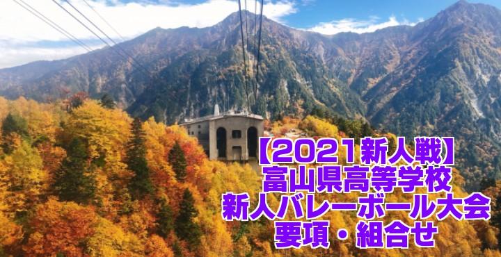 富山 2021新人戦|令和2年度高校新人バレーボール大会 要項・組合せ