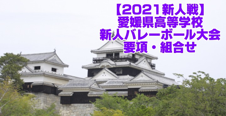 愛媛 2021新人戦|令和2年度高校新人バレーボール大会 要項・組合せ