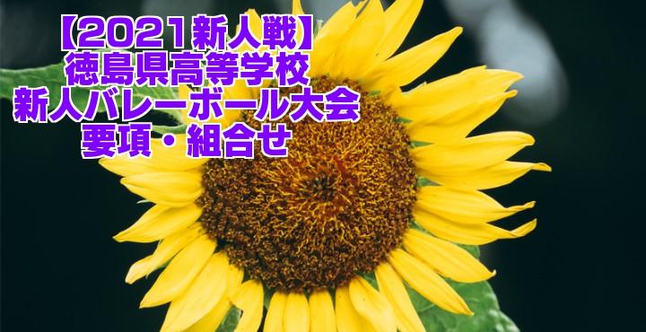 徳島 2021新人戦|令和2年度高校新人バレーボール大会 要項・組合せ