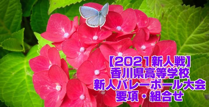 香川 2021新人戦 令和2年度高校新人バレーボール大会 要項・組合せ
