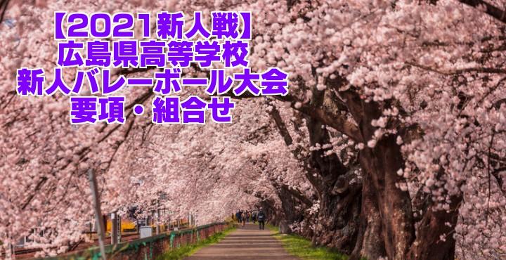 広島 2021新人戦|令和2年度高校新人バレーボール大会 要項・組合せ