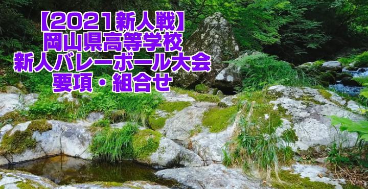 岡山 2021新人戦|令和2年度高校新人バレーボール大会 要項・組合せ