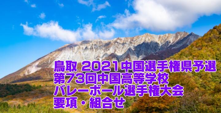 鳥取 2021中国選手権県予選|第73回中国高等学校バレーボール選手権大会 要項・組合せ