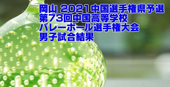 岡山 2021中国選手権県予選|第73回中国高等学校バレーボール選手権大会 男子試合結果
