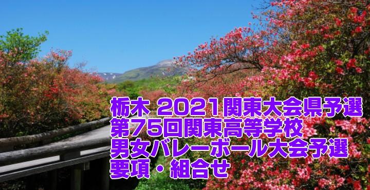 2021 関東大会各県予選|第75回関東高等学校男女バレーボール大会予選 要項・組合せ・結果