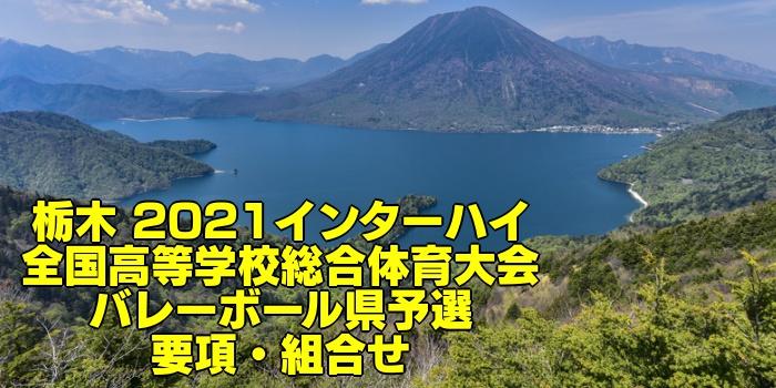 栃木 2021インターハイ 全国高等学校総合体育大会 バレーボール県予選 要項・組合せ