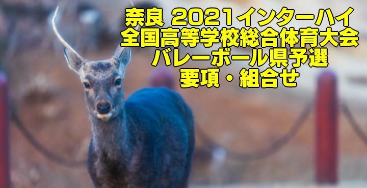 奈良 2021インターハイ 全国高等学校総合体育大会 バレーボール県予選 要項・組合せ