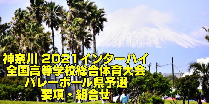 神奈川 2021インターハイ|全国高等学校総合体育大会 バレーボール県予選 要項・組合せ