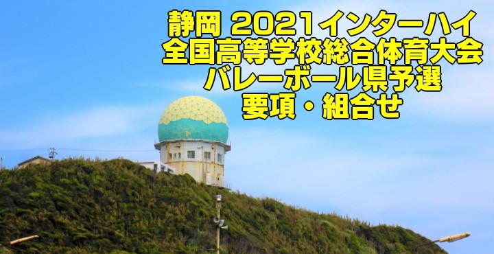 静岡 2021インターハイ|全国高等学校総合体育大会 バレーボール県予選 要項・組合せ