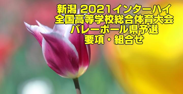 新潟 2021インターハイ|全国高等学校総合体育大会 バレーボール県予選 要項・組合せ