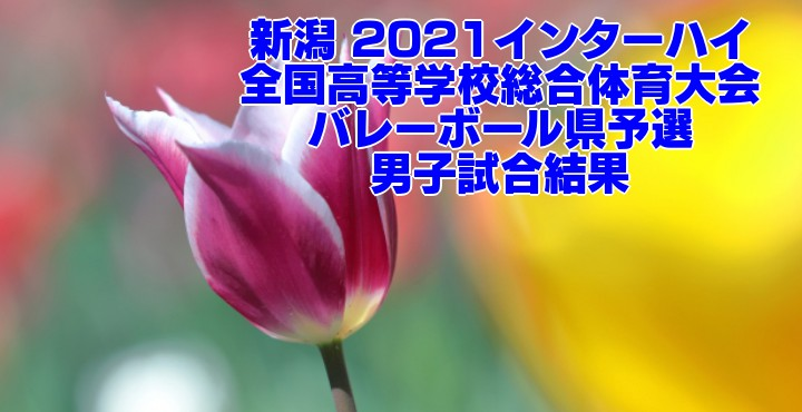新潟 2021インターハイ|全国高等学校総合体育大会 バレーボール県予選 男子試合結果