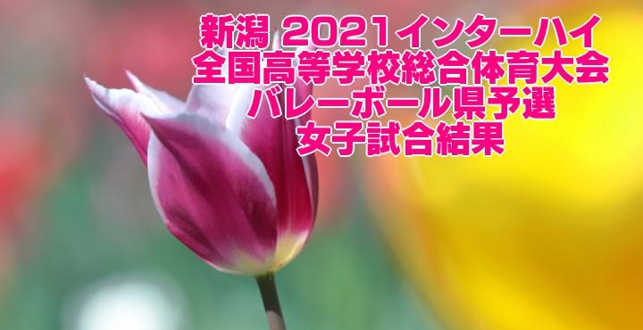 新潟 2021インターハイ|全国高等学校総合体育大会 バレーボール県予選 女子試合結果