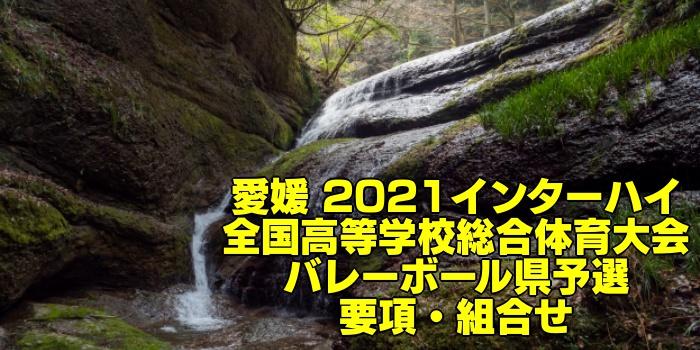 愛媛 2021インターハイ|全国高等学校総合体育大会 バレーボール県予選 要項・組合せ