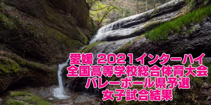 愛媛 2021インターハイ|全国高等学校総合体育大会 バレーボール県予選 女子試合結果