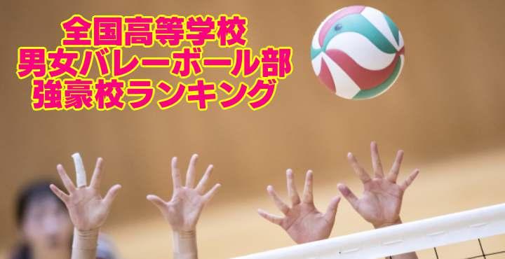 京都府|高等学校男女バレーボール部 強豪校ランキング